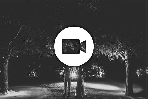 weiner-video-thm